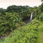 Vistas de las Kulaniapia Falls