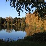 The Lakeside walk