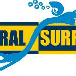 Coral Surfing, Full day tours and Watersports