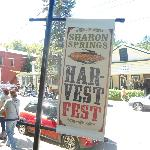 The Fall Harvest Festival bring over 10,00 visitors to Sharon Springs