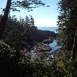 View from Wild Pacific Trail