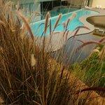 Plunge pool next to Thalasso spa