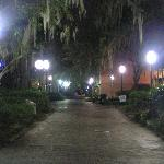 Cougar Way, campus walkway