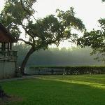 Greynolds Park