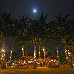 Bamboo beach bar and restaurant
