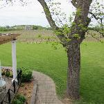 View of Winery
