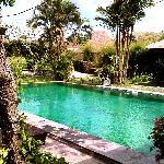 kolam renang yang luas dan bersih