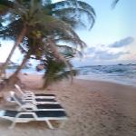 Bilde fra Mamas Coral Beach Restaurant