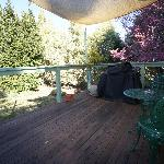 deck area with a view of the bayleaf tree on left