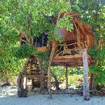 treehut on private beach