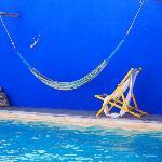 The swimming pool hammock