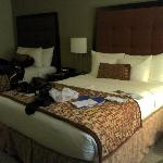 Clean and spacious rooms with comfortable beds.