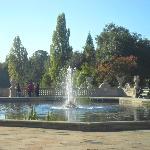 Beautiful Kensington Gardens right opposite the hotel.