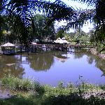 Interestingly decrepit park right outside resort