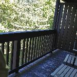 Balconey overlooks mature wooded area. Your dog can easily slip under the barriers to the next r