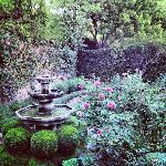 Lovely English Garden at Suzanne's
