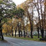 Beatiful main road outside vila mira