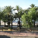 Elche Parque, white doves, promenade, lovely place.