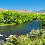 Damonte Outfitters Fly Fishing & Fly Shop