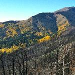 Ski Apache Area