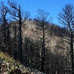 Area stricken by wildfire