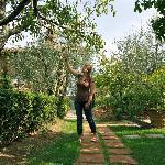 Le Torri Garden