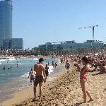Bedcelona beach