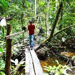 senderos x la selva