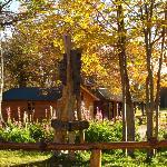 Photo of Villa Las Cotorras