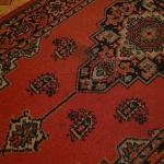 Stains on rugs