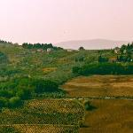 Beutiful tuscany view