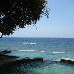 de la piscine a l'aquarium naturel de la mer de Bali