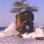 One Tree Island at Manzanilla