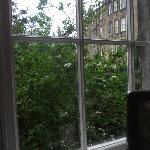 Linda vista desde la ventana de la habitación individual, con baño compartido