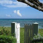 Ebb Tide - Ocean Front Property