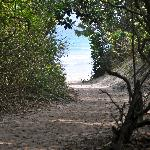 Path to the famous Lopes Mendes beach