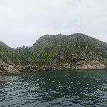 Parrot Island (off Praia do Forte)