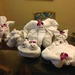 Some of our towel animals