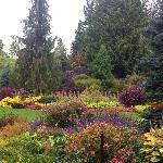 حديقة الملكة إليزابيث