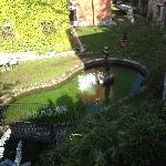 One of many of the little ponds/water features at the hotel.