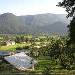 Selo kraj Bled