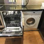 Dishwasher and washer/dryer combo