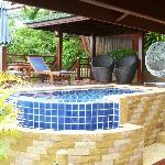 infinity pool/Plumeria villa