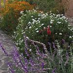 Gardens at Sol y Luna