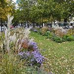 Public Garden - Olivaer Platz