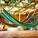 Chill out in our hammocks on the patio