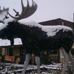 Moose Creek Cafe - Mascot