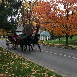 A horse carriage ride on a beautiful fall day!