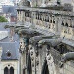 Gargoyles adorn the facade