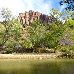 The Virgin River